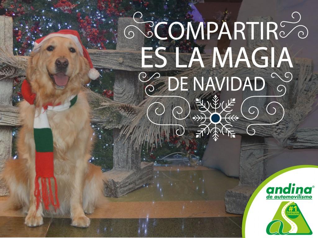 Navidad_con_Andina