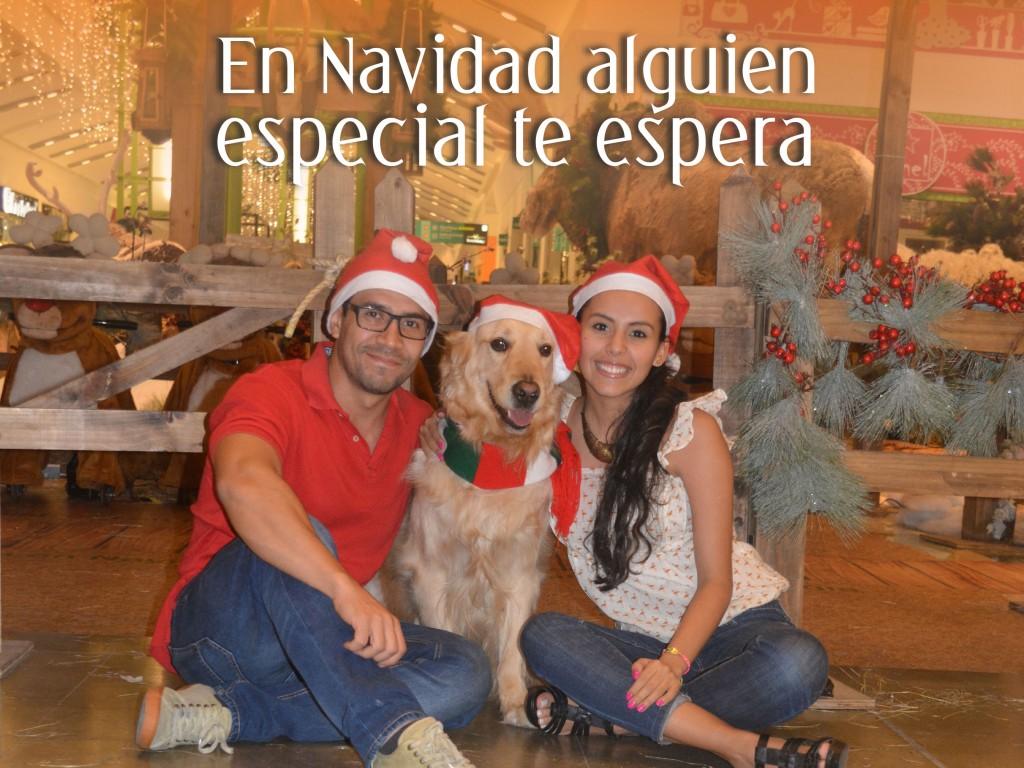 navidad_andina